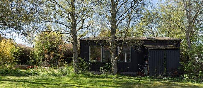 Hus i grönska