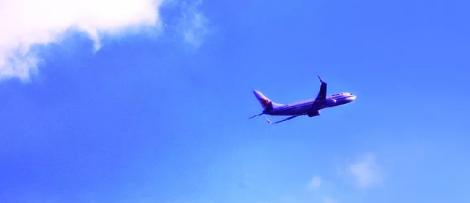 Två utmaningar behöver klaras av för att realisera billigt biobränsle för flyget enligt forskarna. Bild: Sasa Liu