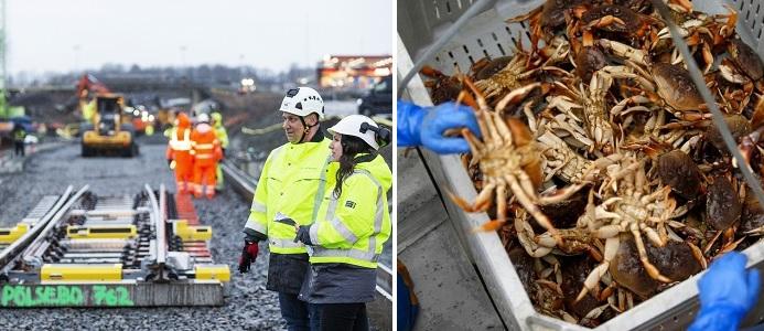 (Bild till vänster) Fotograf Kasper Dudcik. (Bild till höger) Alvin Jornada / The Press Democrat
